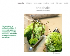 01website_anaphalis
