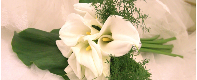 bouquet_calle_anaphalis