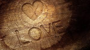 love_trend_anaphalis-