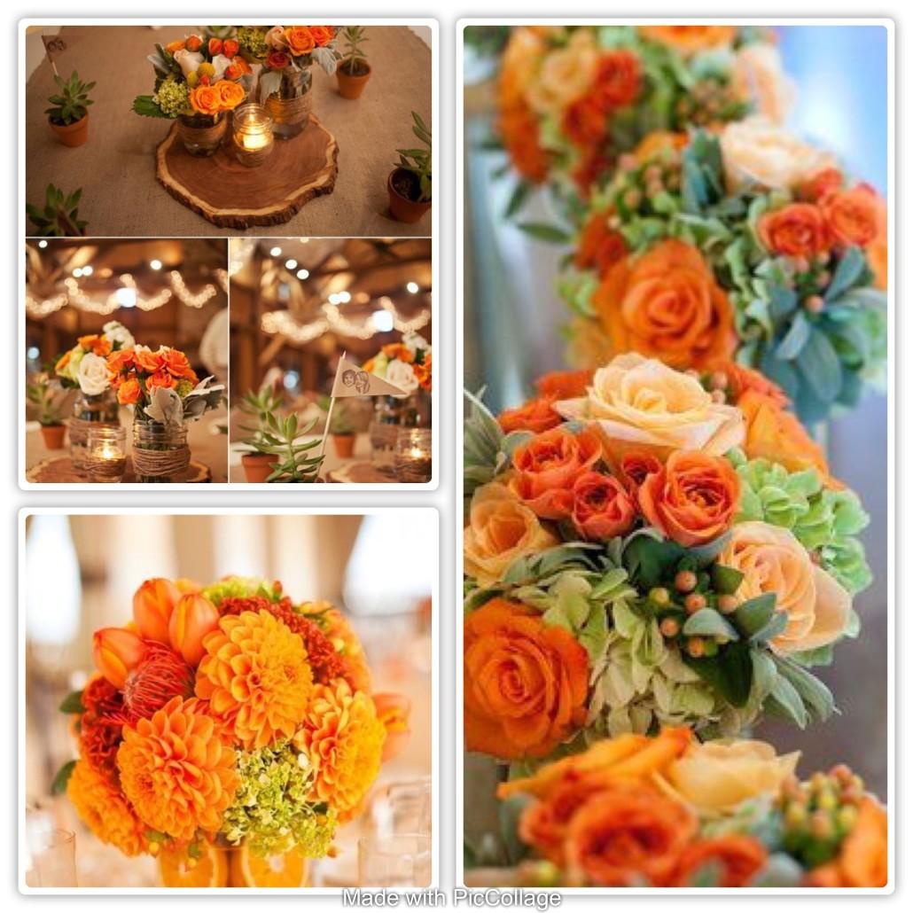 matrimonio_arancione_anaphalis